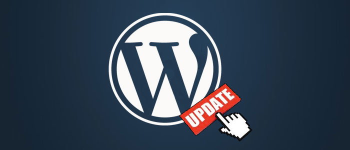 Wordpress update to 3.9 was giving several problems